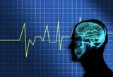human-brain-7070042